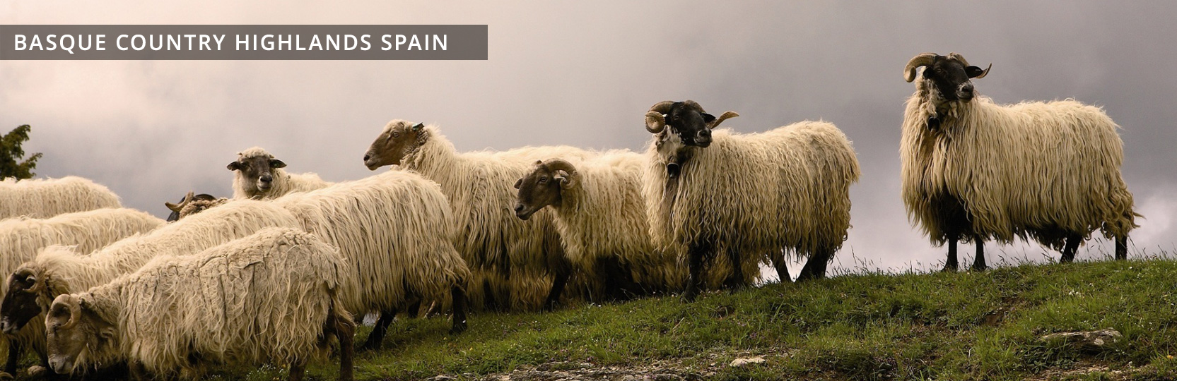 Just Follow Me PAÍS VASCO Highlands Spain